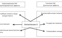 Антагонисты рецепторов ангиотензина II. Пути образования и рецепторы. Основные эффекты. Показание, противопоказание и побочные действия. Список препаратов.